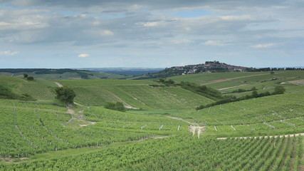 The village and vineyards of Sancerre in France