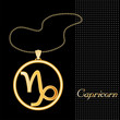 Capricorn Necklace and Chain, gold silhouette astrology symbol