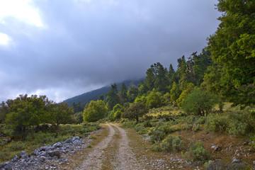 grèce; ioniennes, kefalonia : mont Enos, sentier de montagne