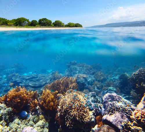 Bali Barat National Park
