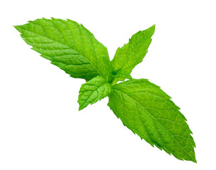 Sheet of mint