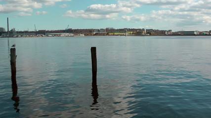 Kiel Canal panning, Germany, seagull resting on wooden pillar
