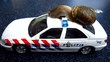 snail on police car