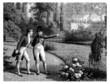 Napoleon Talking - 19th century