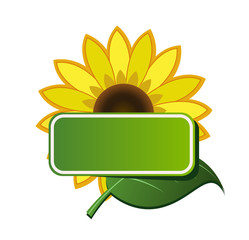 Vector sticker and sunflower