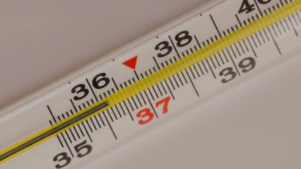 Glass mercurial thermometer takes temperature