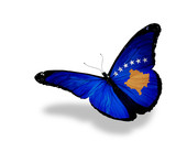 Kosovo flag butterfly flying, isolated on white background poster