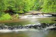 Fototapeten,reserve,rivers,heiligtum,cascade