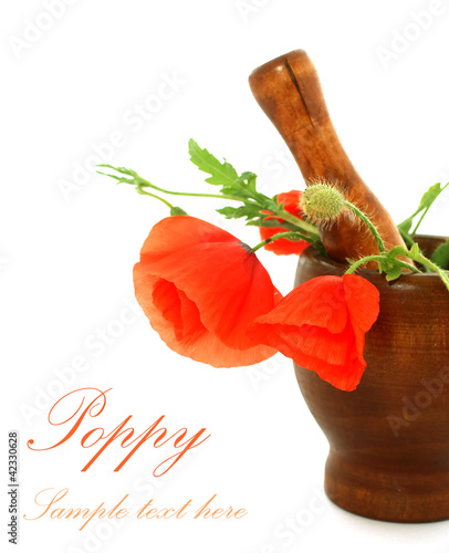 poppy in wooden mortar isolated on white background