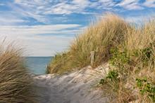 Aller à la plage à travers les dunes avec plage de gazon sur la mer Baltique