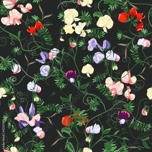 Decorative colorful seamless with sweet pea patterns.