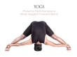 Yoga prasarita padottanasana pose