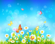 Sunny day background with flowers and butterflies