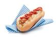 Hotdog In Napkin