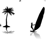 Silhouettes of woman windsurfer at the sunset near the palm tree