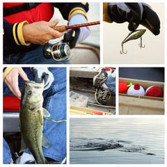 Fishing Collage