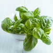 Fresh basil in a bowl on wooden background