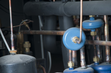 Inside industrial refrigirator