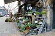 Flower shop in Gorinchem. Netherlands