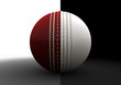 Cricket Ball Split Between Formats