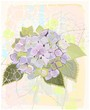 Greeting card with hydrangea.