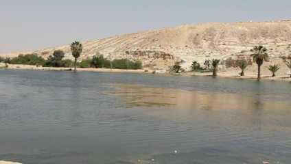 Lake in Oasis