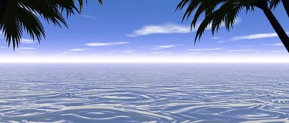 soleil mer et palmiers