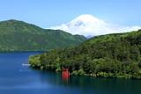 Fototapety 富士と赤鳥居