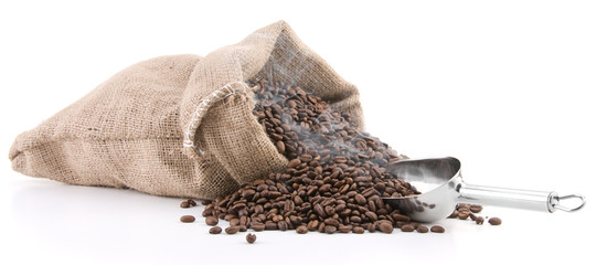 Fresh roasted smoking coffee beans in burlap sack