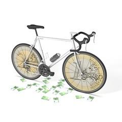 Euro Money Bicycle