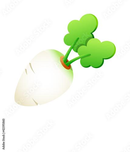 Vector icon white radish