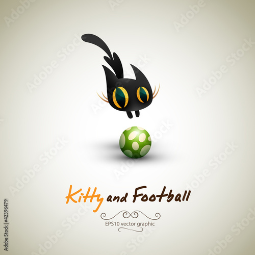 Little Cat playing with Football