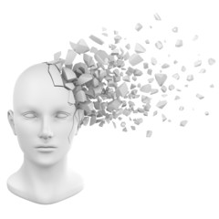 human head shatter white