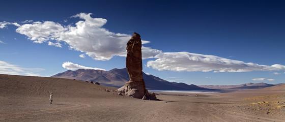 The Moai of Tara rock formation, Atacama, Chile