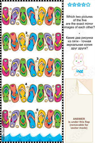 Visual puzzle - flip-flops - spot mirror images