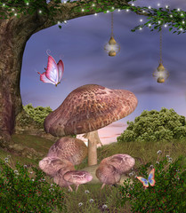 Enchanted nature series - magic mushrooms