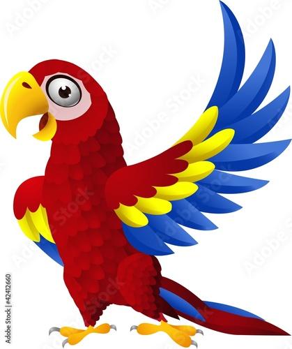 Fototapeten,macaw,vögel,tier,adorable
