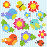 Fototapety Set of flowers and birds