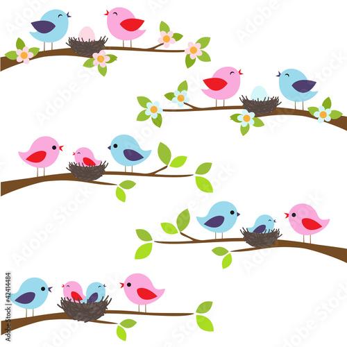 Fototapeten,vögel,hübsch,tage,entwerfen