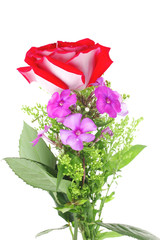 flowers : small bouquet of rose and pansy