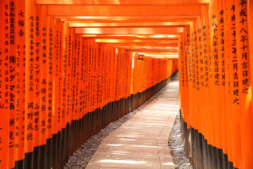 Torii gate tunnel in Kyoto, Japan