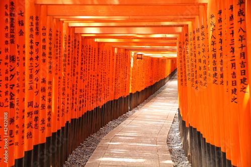 torii-brama-tunel-w-kyoto-japonia