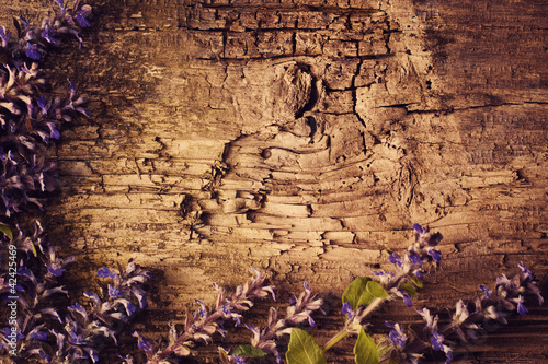 flowers on wooden background|42425469