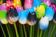 Dutch wooden souvenir tulips