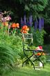 Garten Stuhl Blumen Beet bunt