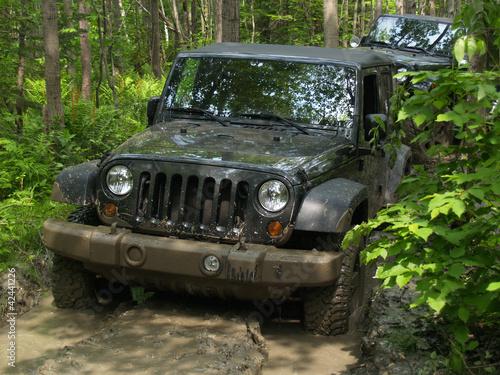 Fototapeten,jeep,wald,adrenalin,autos