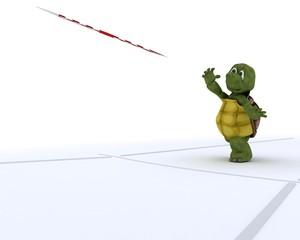 tortoise competing in javelin