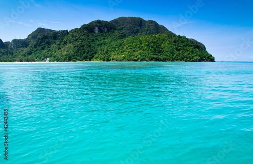 Foto op Canvas Groene koraal sea