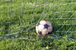 Ball im Tor