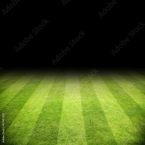 canvas print picture Fussballrasen